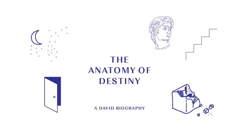 Anatomy of Destiny