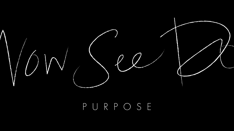 Purpose – Part 1