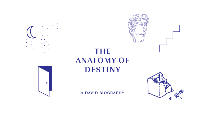 Anatomy of Destiny – Part 1